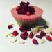 Pomegranate Kiwi Mousse $1.99 ( #503 )